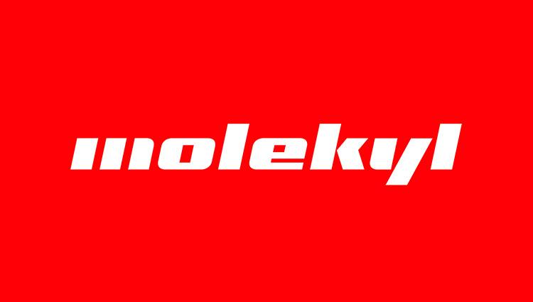 Molekyl_web